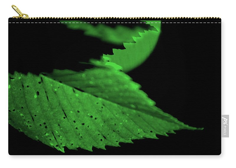 Leaf Carry-all Pouch featuring the photograph Green Leaf in Sun by Lonnie Paulson
