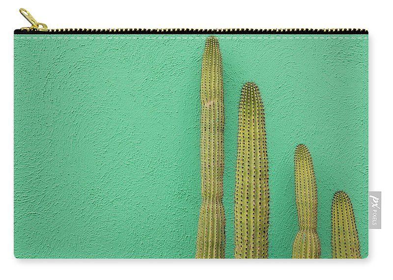 Tranquility Carry-all Pouch featuring the photograph Green Wall And Cactus by Joanna Mccarthy