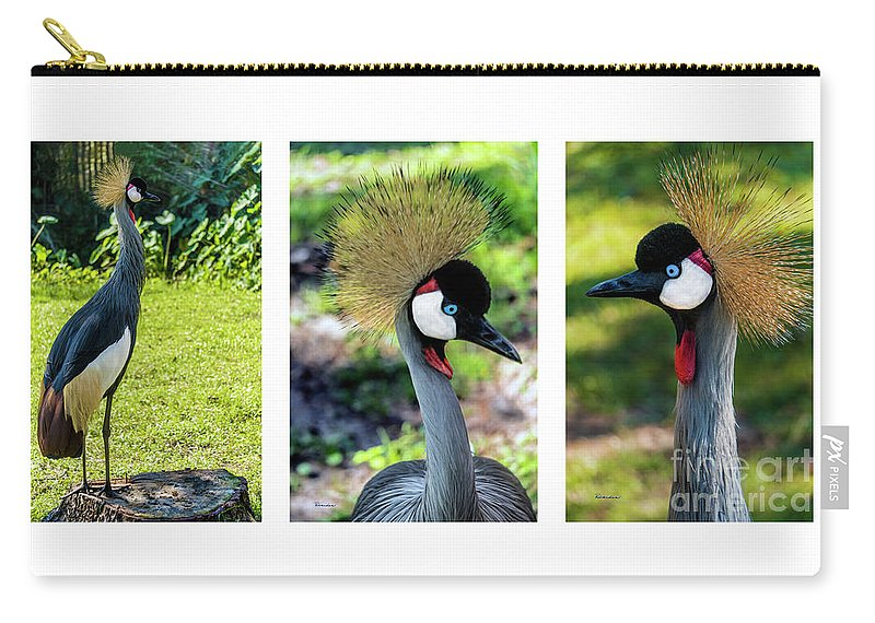 Gulf Carry-all Pouch featuring the photograph Grey Crowned Crane Gulf Shores Al Collage 6 Triptych by Ricardos Creations