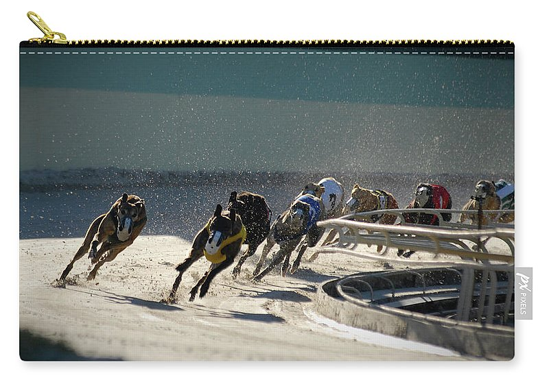 Dust Carry-all Pouch featuring the photograph Greyounds 3 Of 7 by Dplight