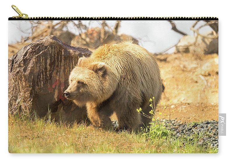 Alaska Carry-all Pouch featuring the photograph Grizzly Bear by Diego Garcia