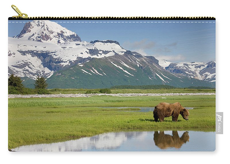 Brown Bear Carry-all Pouch featuring the photograph Grizzly Bear, Katmai National Park by Paul Souders