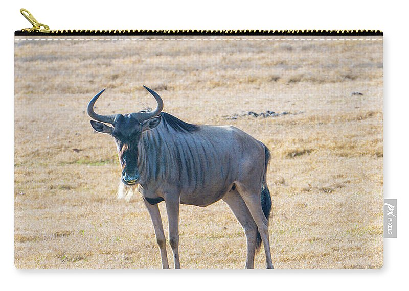 Wildebeest Carry-all Pouch featuring the photograph Handsom Wildebeest On The Plains by Douglas Barnett