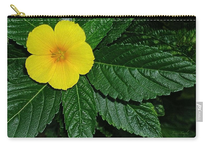 Yellow Alder Carry-all Pouch featuring the photograph Hawaii's Yellow Alder by James Temple