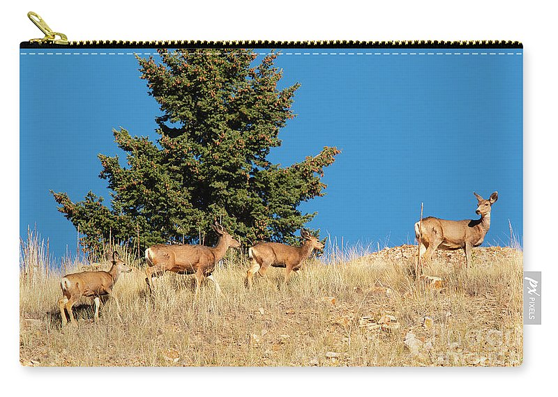 Deer Carry-all Pouch featuring the photograph Herd Of Colorado Deer by Steve Krull
