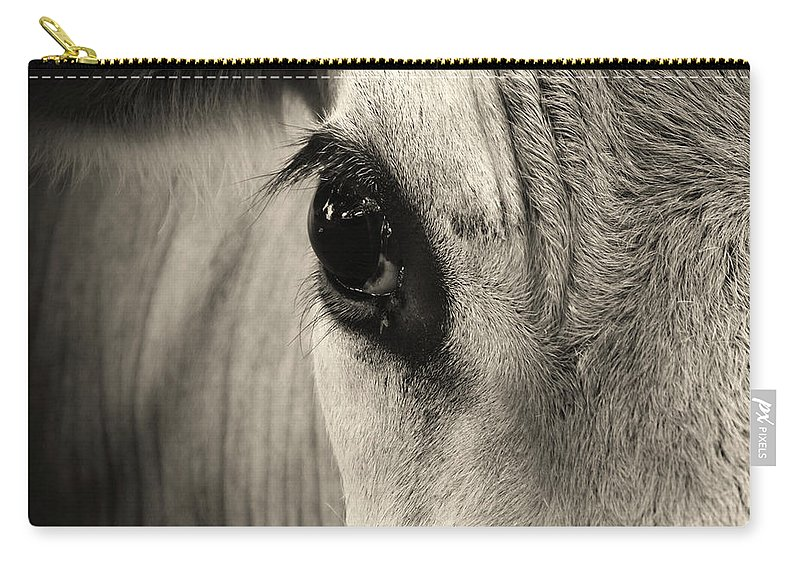 Horse Carry-all Pouch featuring the photograph Horse Eye by Karena Goldfinch