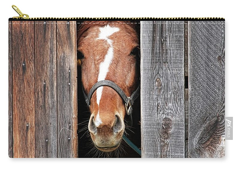 Horse Carry-all Pouch featuring the photograph Horse Peeking Out Of The Barn Door by 2ndlookgraphics