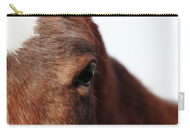 Horse Carry-all Pouch featuring the photograph Horse Portrait by R-j-seymour