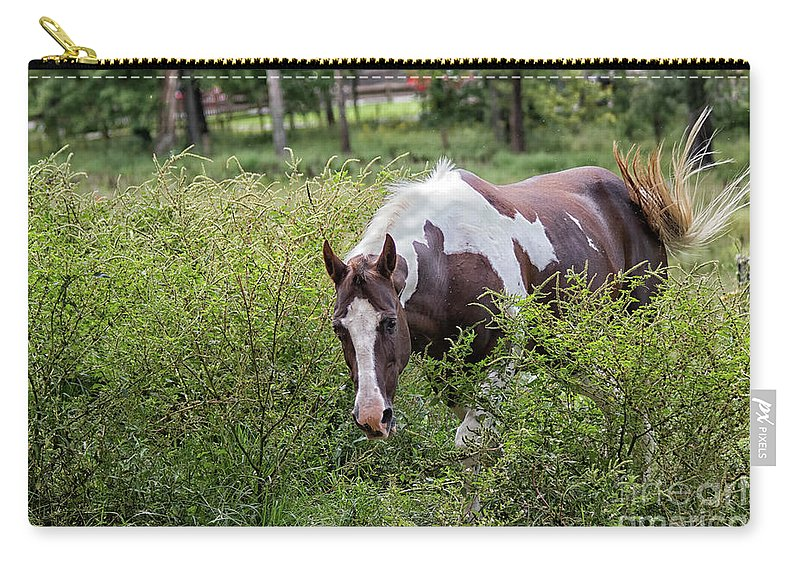 Horse Carry-all Pouch featuring the photograph Horse Print 578 by Paulette Thomas