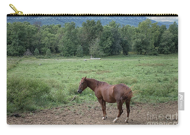 Horse Carry-all Pouch featuring the photograph Horse Print 900 by Paulette Thomas