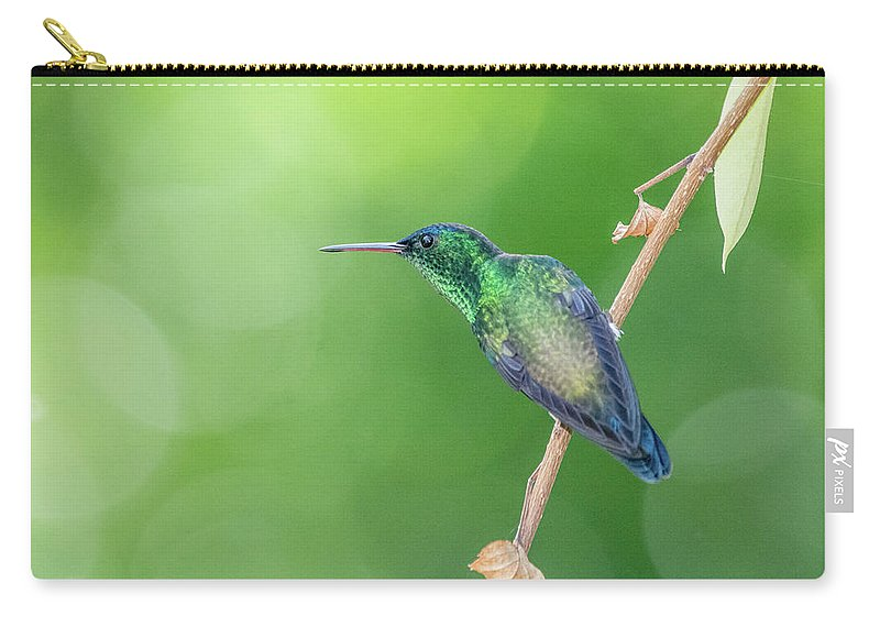 Bokeh Carry-all Pouch featuring the photograph Hummingbird Abyss by Christian Irian
