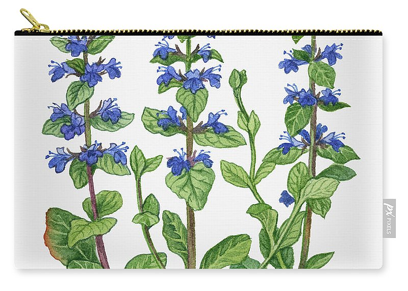 Watercolor Painting Carry-all Pouch featuring the digital art Illustration Of Ajuga Reptans Blue by Michelle Ross