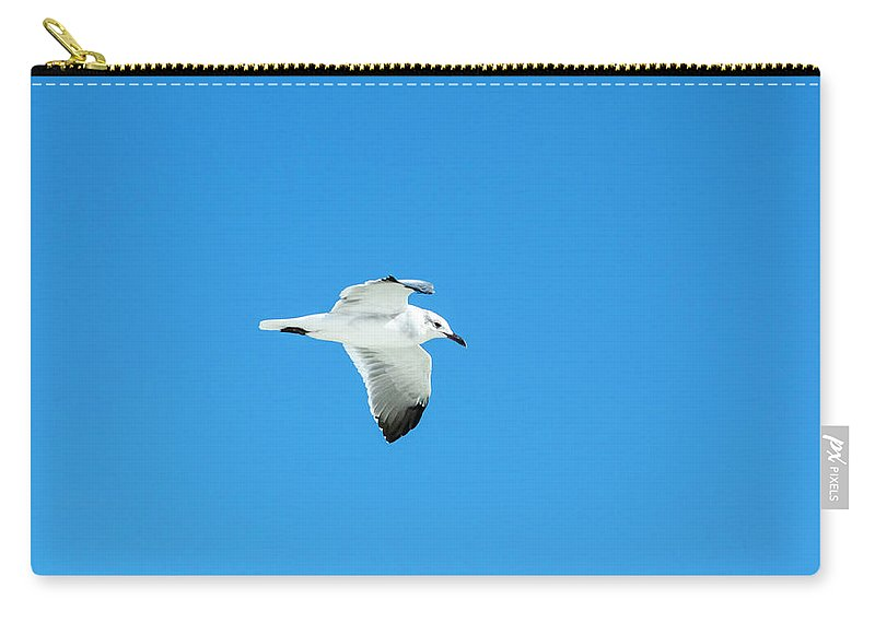 Seagull Carry-all Pouch featuring the photograph In To The Blue by Robert Anderson