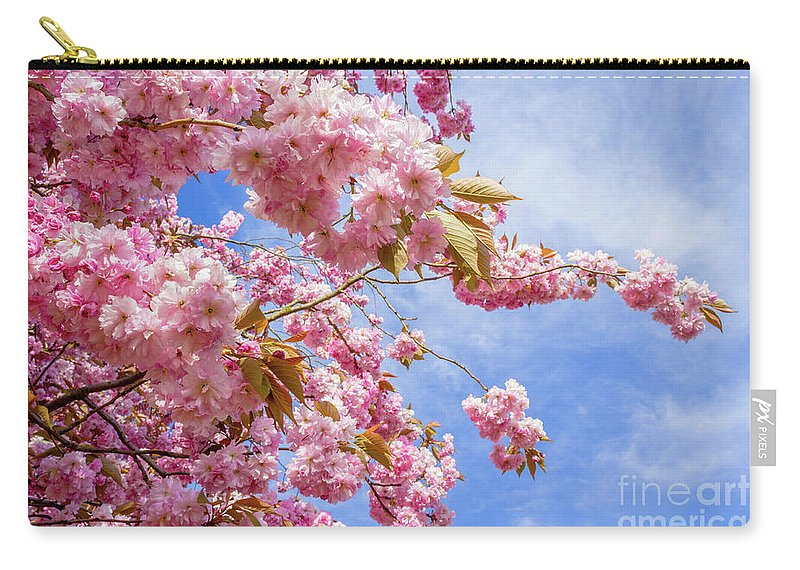 Beautiful Carry-all Pouch featuring the photograph Japanese Cherry by Malgorzata Larys