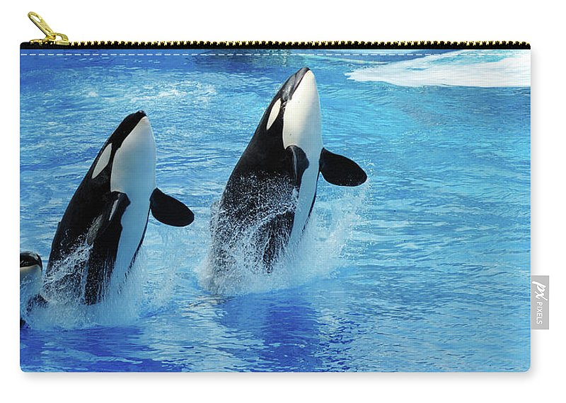 Panoramic Carry-all Pouch featuring the photograph Killer Whale Family Jumping Out Of Water by Purdue9394
