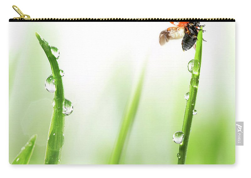 Hanging Carry-all Pouch featuring the photograph Ladybug On Green Grass by Sbayram