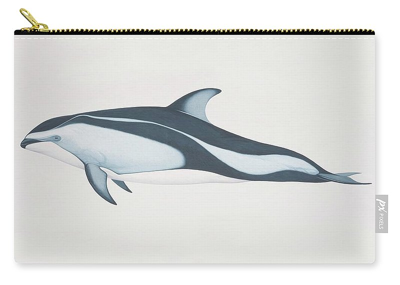 White Background Carry-all Pouch featuring the digital art Lagenorhynchus Obliquidens, Pacific by Martin Camm