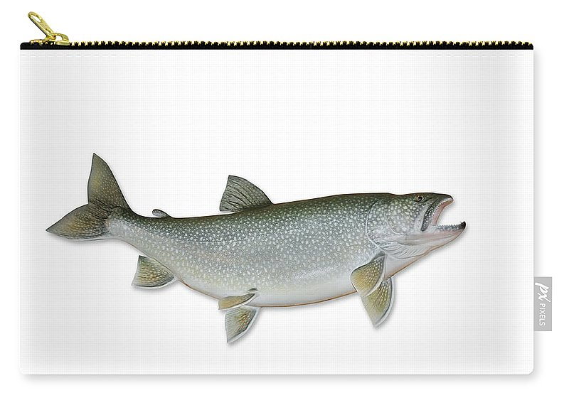 White Background Carry-all Pouch featuring the photograph Lake Trout With Clipping Path by Georgepeters