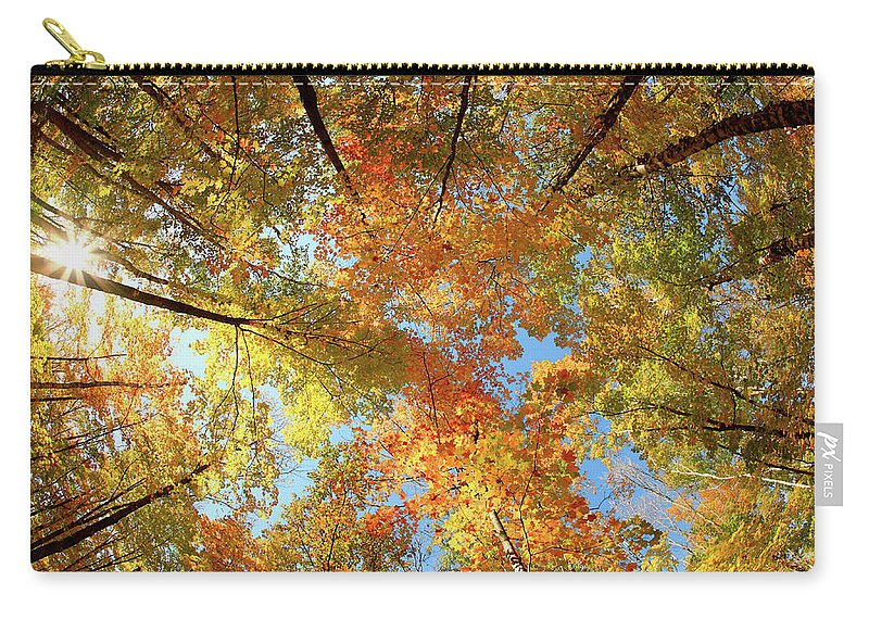 Canopy Carry-all Pouch featuring the photograph Langlade County Canopy by Todd Klassy
