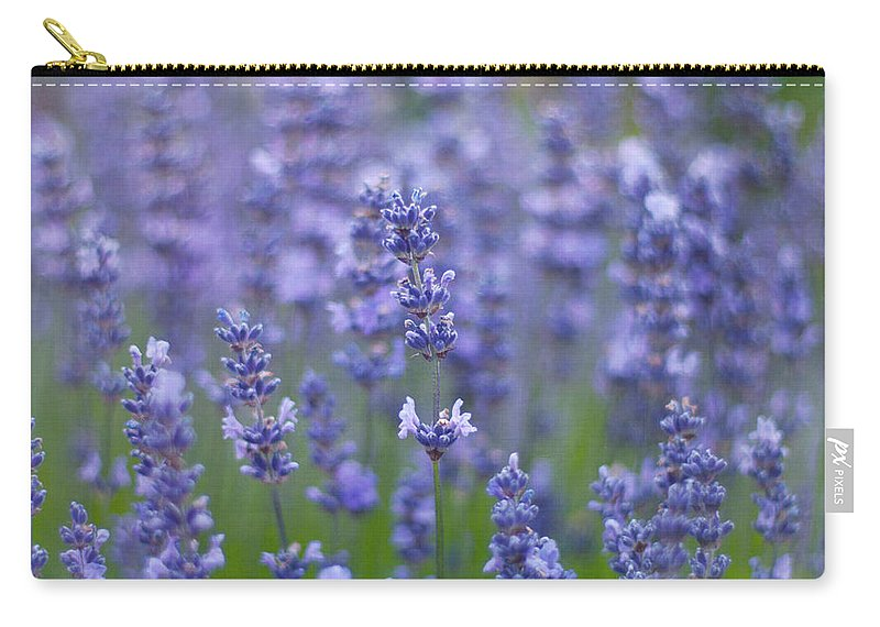 Otago Region Carry-all Pouch featuring the photograph Lavender Flowers by Jill Ferry