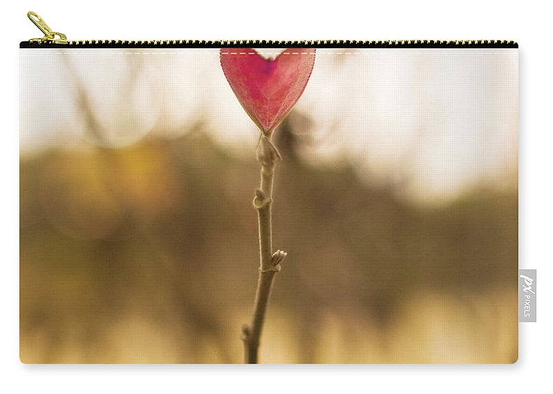 Outdoors Carry-all Pouch featuring the photograph Leaf In Heart Shape by Twomeows