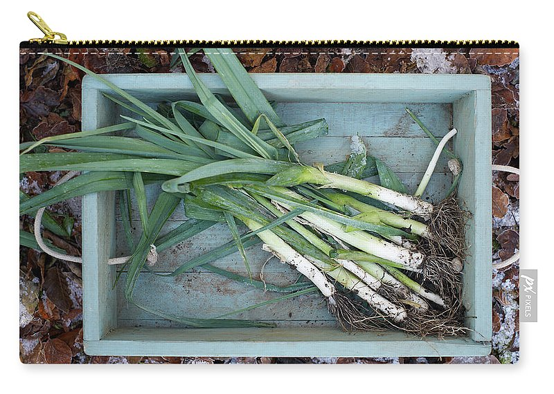 Outdoors Carry-all Pouch featuring the photograph Leeks In Wooden Box On A Frosty Winter by Dougal Waters