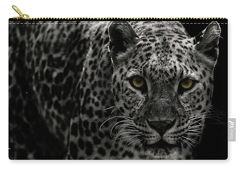 Big Cat Carry-all Pouch featuring the photograph Leopard by Somak Pal