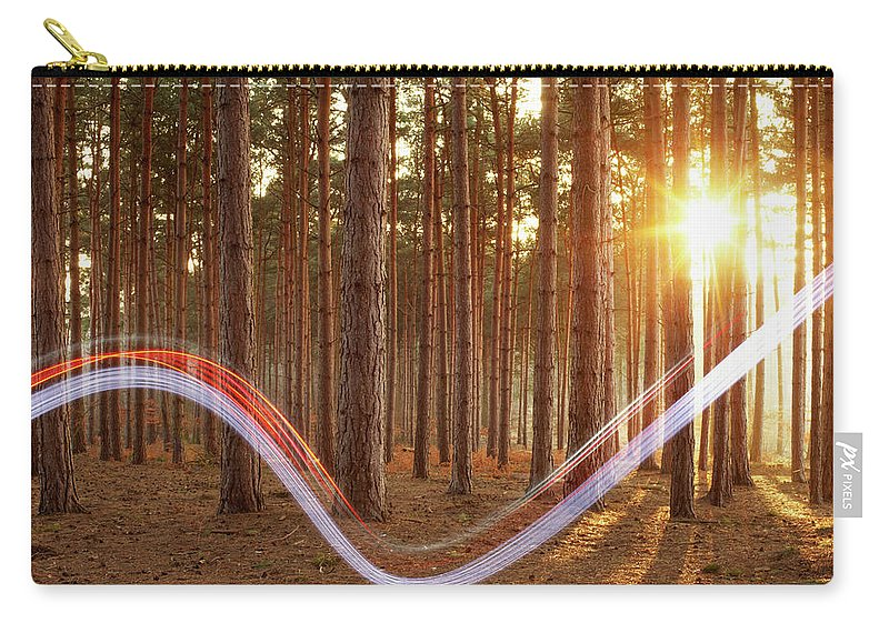Environmental Conservation Carry-all Pouch featuring the photograph Light Swoosh In Woods by Tim Robberts