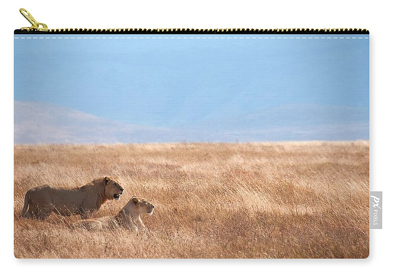 Scenics Carry-all Pouch featuring the photograph Lion Couple In Ngorongoro Crater by Ceneri