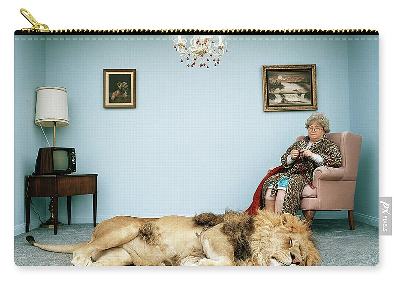 Pets Carry-all Pouch featuring the photograph Lion Lying On Rug, Mature Woman Knitting by Matthias Clamer