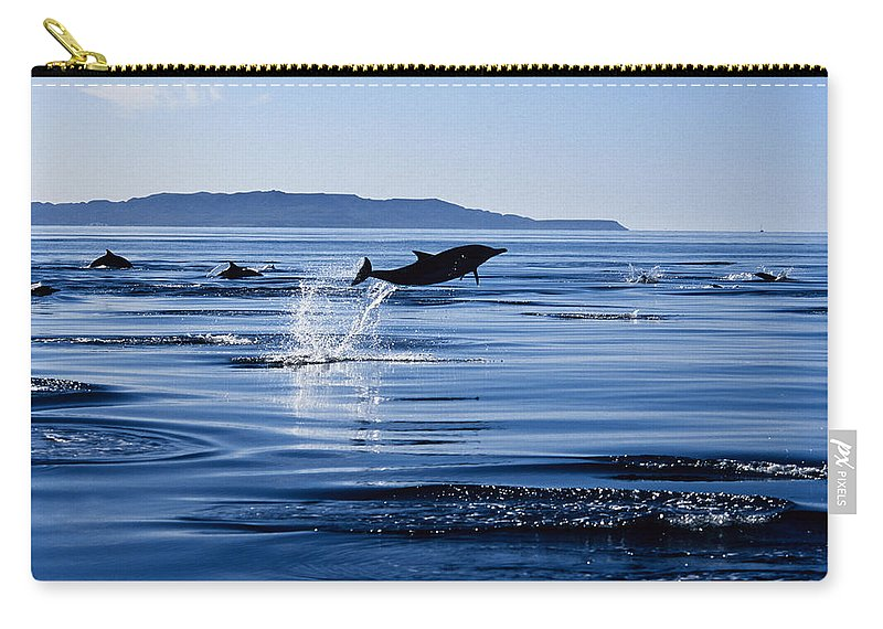 Latin America Carry-all Pouch featuring the photograph Long-nosed Common Dolphin,delphinus by Gerard Soury