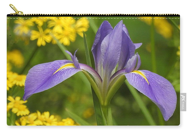Flower Carry-all Pouch featuring the photograph Louisiana Iris by Charlotte Schafer