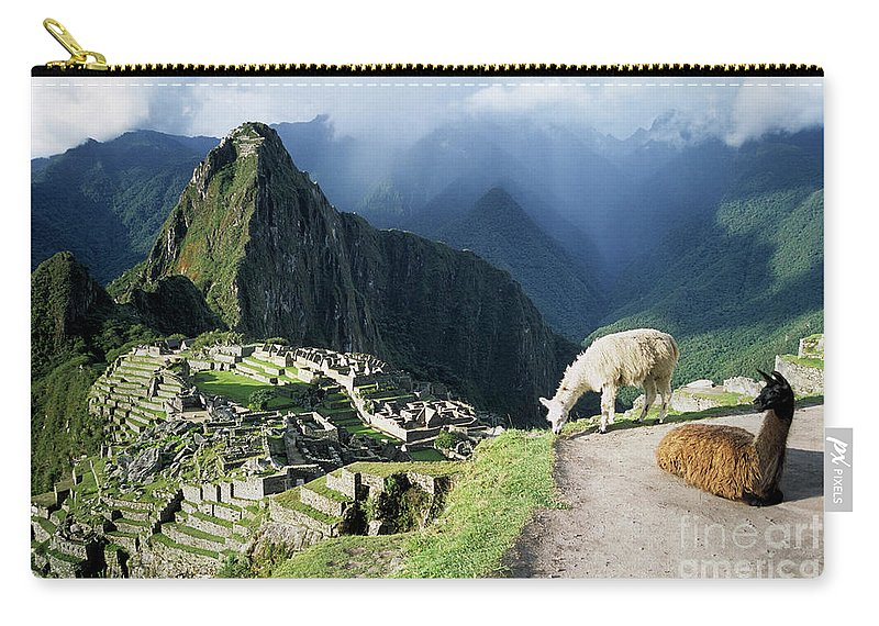 Machu Picchu Carry-all Pouch featuring the photograph Machu Picchu And Llamas by James Brunker