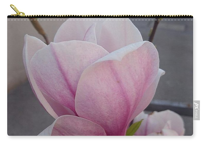 Carry-all Pouch featuring the photograph Magnolia by Anzhelina Georgieva