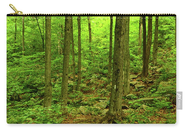 Massachusetts Appalachian Trail Spring Green Carry-all Pouch featuring the photograph Massachusetts Appalachian Trail Spring Green by Raymond Salani III