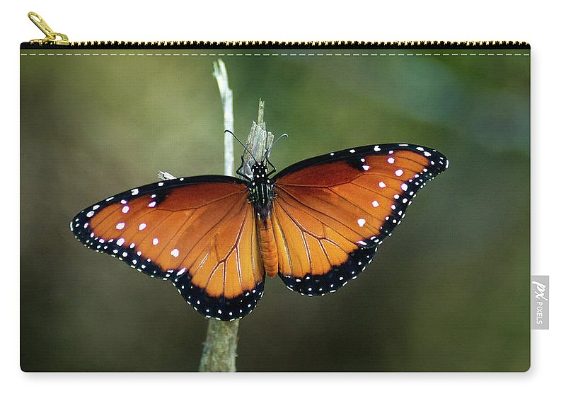 Butterfly Carry-all Pouch featuring the photograph Monarch Butterfly by Cecilio Martinez