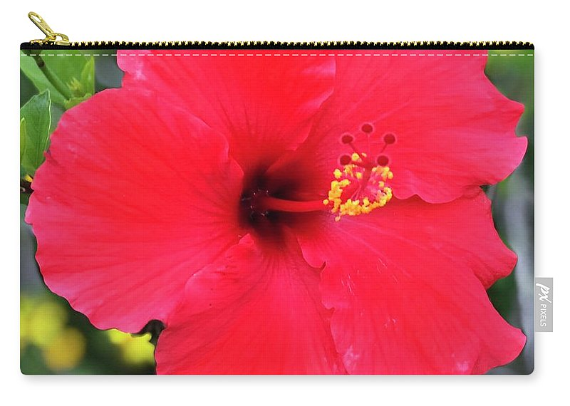 Floral Carry-all Pouch featuring the mixed media Montecito Perfection by Michael Bobay