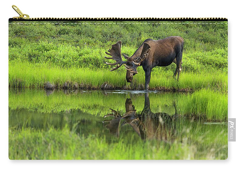 Alaska Carry-all Pouch featuring the photograph Morning Isolation by Chad Dutson