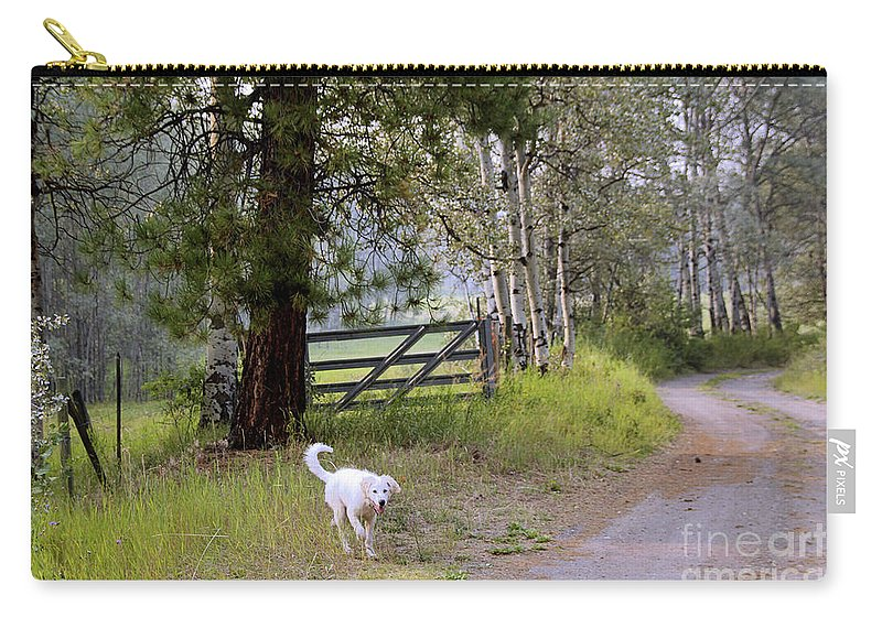 Akbash Carry-all Pouch featuring the photograph Morning Walk1 by Roland Stanke