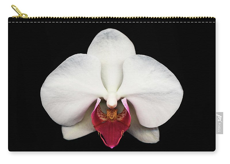 Black Background Carry-all Pouch featuring the photograph Moth Orchid Against Black Background by Mike Hill