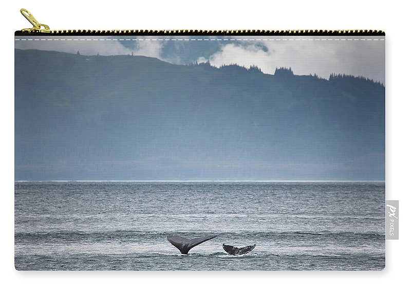 Water's Edge Carry-all Pouch featuring the photograph Mother And Calf Whale Tails Megaptera by Blake Kent / Design Pics