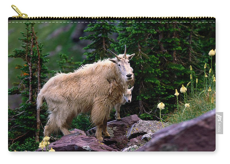 Animal Themes Carry-all Pouch featuring the photograph Mountain Goat Oreamnos Americanus by Art Wolfe