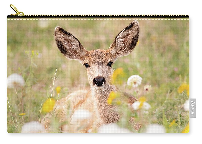 Deer Carry-all Pouch featuring the photograph Mule Deer Fawn Lying In Wildflowers by Tony Hake