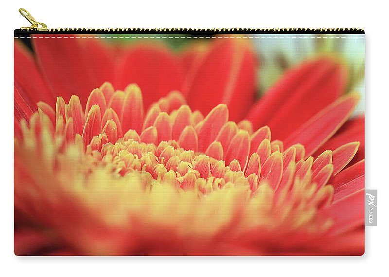 Mum Carry-all Pouch featuring the photograph Mum Flower by C Gerber