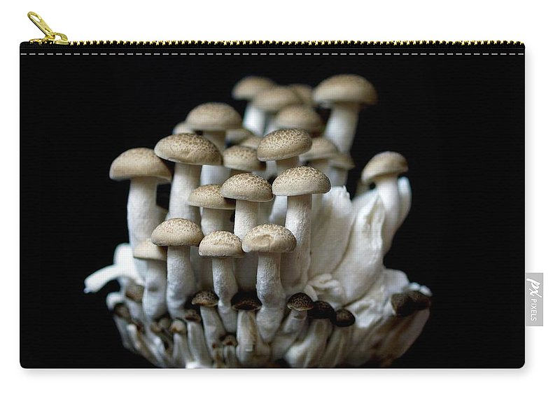 Edible Mushroom Carry-all Pouch featuring the photograph Mushoom Against Black Background by Zachary Rathore