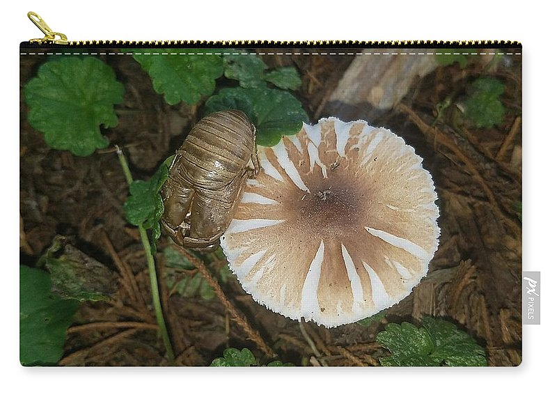 Mushroom/insect Carry-all Pouch featuring the photograph Mushroom by Shirley Morrison