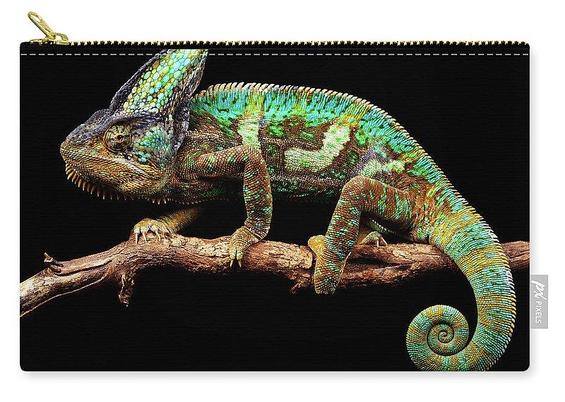 Animal Themes Carry-all Pouch featuring the photograph Nice And Slow by Markbridger