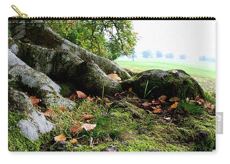 Nut Carry-all Pouch featuring the photograph Nuts And Fallen Leaves At The Foot Of A by John Short / Design Pics