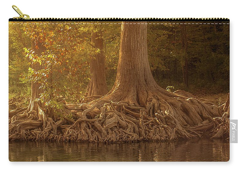 Roots Carry-all Pouch featuring the photograph Old Cypress Tree Roots by Cecilio Martinez