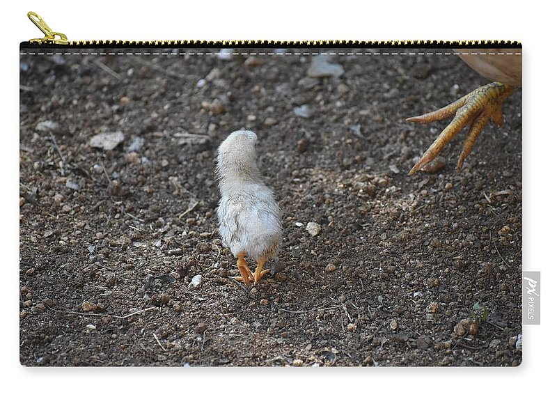 Baby Chick Carry-all Pouch featuring the digital art Orange Feet by Cassidy Marshall